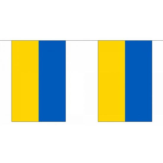 Luxe Oekraine vlaggenlijn 9 m