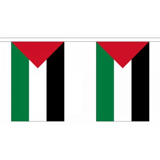 Palestina vlaggenlijn 9 m