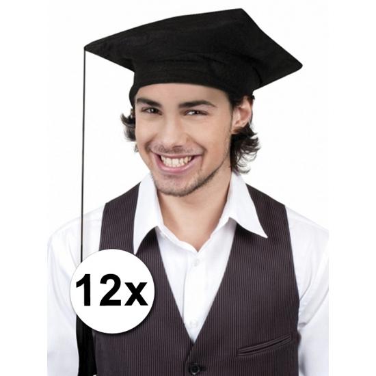 12x Afstudeer hoedjes geslaagd