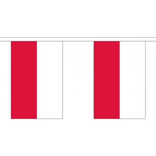 Landen versiering en vlaggen Geen Buiten vlaggenlijn Polen 3 m