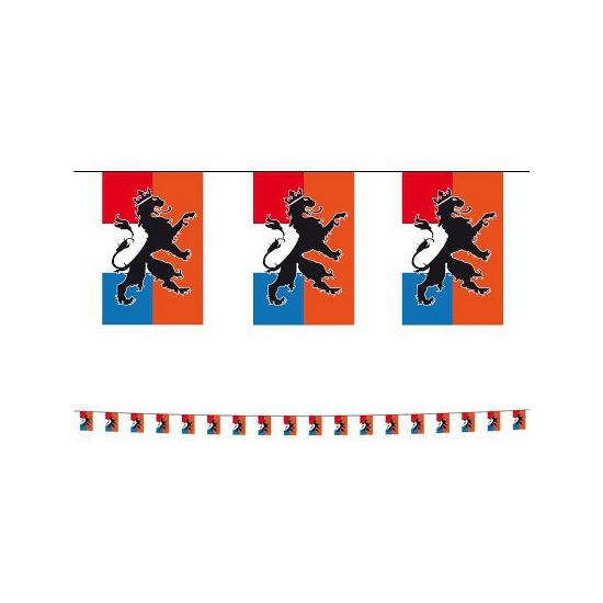 Holland vlaggenlijn met leeuw 10 meter Geen Oranje artikelen
