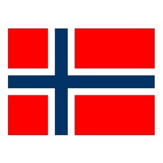 Mini vlag Noorwegen 60 x 90 cm Geen Beste kwaliteit