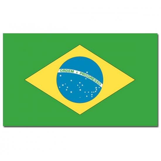 Landen versiering en vlaggen Geen Vlag Brazilie 90 x 150 cm