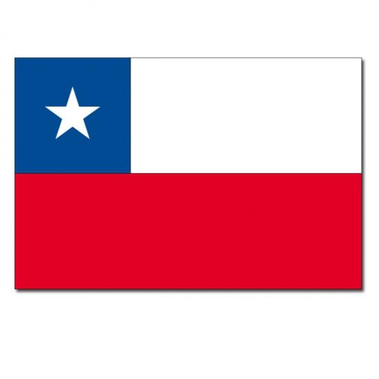 Geen Vlag Chili 90 x 150 cm Landen versiering en vlaggen