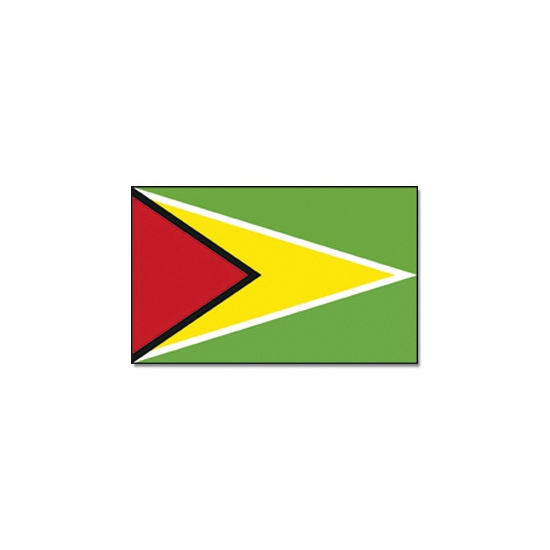 Landen versiering en vlaggen Geen Vlag Guyana 90 x 150