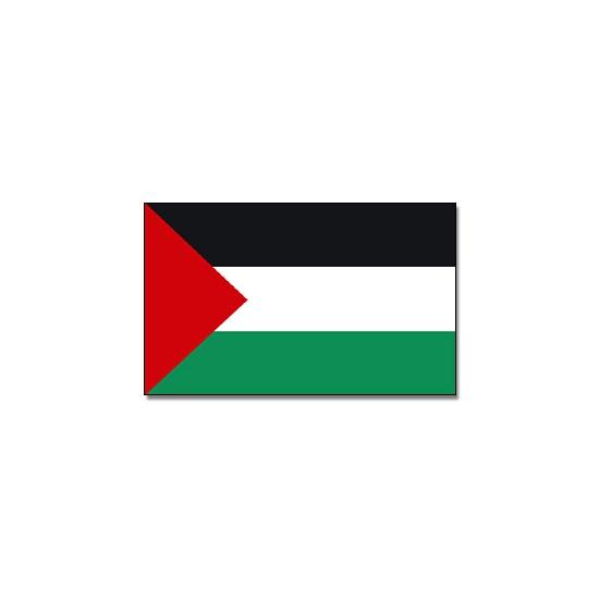 Landen versiering en vlaggen Vlag Palestina 90 x 150 cm